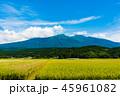 田園 田んぼ 風景の写真 45961082