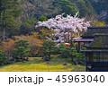 日本庭園 和 風景の写真 45963040
