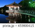 奈良公園 浮見堂 鷺池の写真 45966415