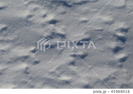 雪波 45968018