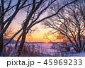 ウィンター ウインター 冬の写真 45969233