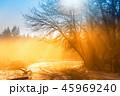ウィンター ウインター 冬の写真 45969240