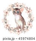 ねこ ネコ 猫のイラスト 45974804