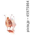 干支 亥 猪のイラスト 45975864