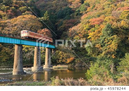 【快速】奥久慈紅葉レトロ号と山間部の紅葉風景 45978244