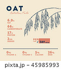 オート麦 ムギ 燕麦のイラスト 45985993
