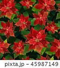 パターン 柄 模様のイラスト 45987149