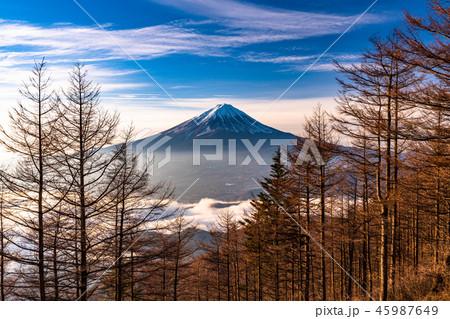 《山梨県》富士山の朝景 45987649
