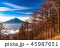 富士山 富士 夜明けの写真 45987651