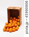 オレンジ オレンジ色 橙の写真 45990906