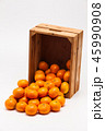 オレンジ オレンジ色 橙の写真 45990908