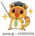 タヌキのマスコットキャラクター 先生風 45995928