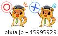 タヌキのマスコットキャラクター 先生風 まるばつ 45995929