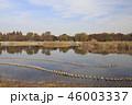 公園 舎人公園 メタセコイアの写真 46003337
