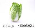 白菜 46003921