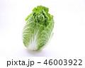 白菜 46003922