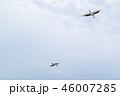 鶴 丹頂 鳥の写真 46007285
