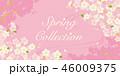 桜 ピンク 春のイラスト 46009375