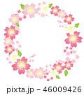 桜 水彩 花のイラスト 46009426