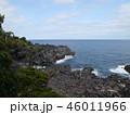 城ヶ崎海岸 海岸 海の写真 46011966