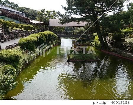 伊豆シャボテン動物公園 46012138