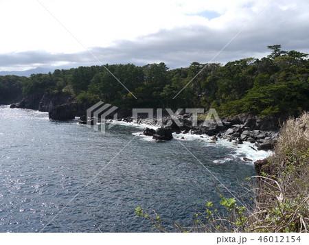 城ヶ崎海岸(伊豆半島ジオパーク) 46012154