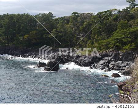 城ヶ崎海岸(伊豆半島ジオパーク) 46012155