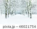公園 ゆき スノーの写真 46021754