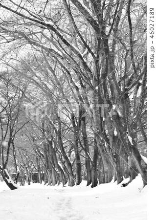 雪景色 46027189