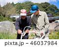 男性 農家 農業の写真 46037984