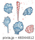 Hand drawn vector illustrations - collection of seashells. Marine set. Perfect for invitations 46044812
