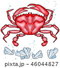 Colorful red crab vector illustration. Sea creature in flat design. Shell crab icon isolated on 46044827