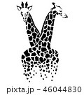 Vector giraffe silhouette, abstract animal illustration. Can be used for background, card, print 46044830