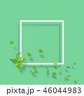 新緑 フレーム 若葉のイラスト 46044983