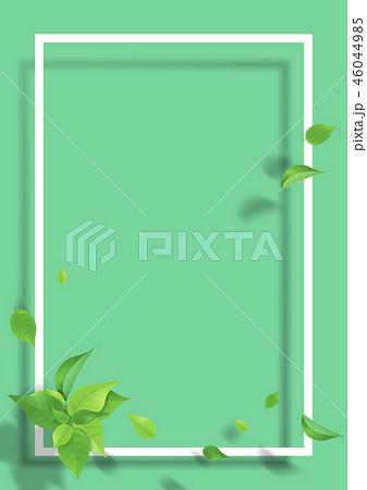 新緑 葉 白いフレーム グリーン 46044985