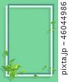 新緑 フレーム 葉のイラスト 46044986