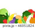 野菜 イラスト 素材 46051824