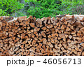 stack of chopped firewood in forest 46056713