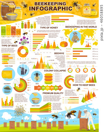Beekeeping industry infographic poster for apiary 46058895
