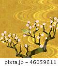白梅とうぐいす 46059611