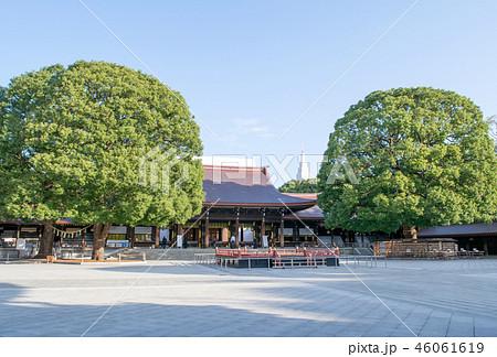 東京都 明治神宮 拝殿 46061619