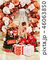 クリスマス 46063850