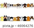 犬たちのボーダー 前後 大型犬 46064276