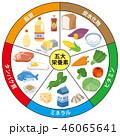 五大栄養素 栄養素 栄養のイラスト 46065641