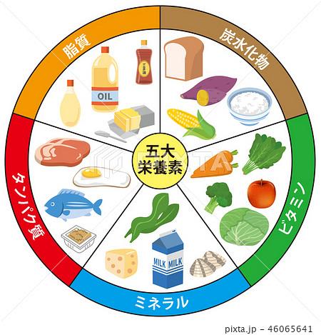 五大栄養素のイラスト素材 [4606...