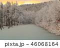 青い池と霧氷 46068164