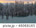 青い池と霧氷 46068165