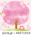 桜 桜の木 木のイラスト 46071919