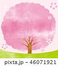 桜 桜の木 木のイラスト 46071921