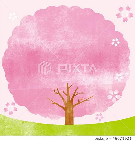 桜の木 背景イラスト 46071921